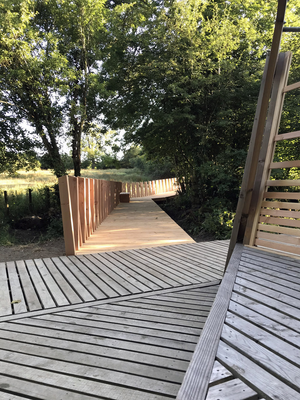 Kingcombe Boardwalk – phase 2 complete